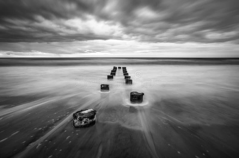Blanco negro de Charleston South Carolina Scenic Seascape de la playa de la locura imagenes de archivo