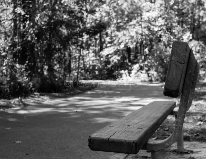 Blanco negro de la trayectoria que camina del banco de parque fotografía de archivo