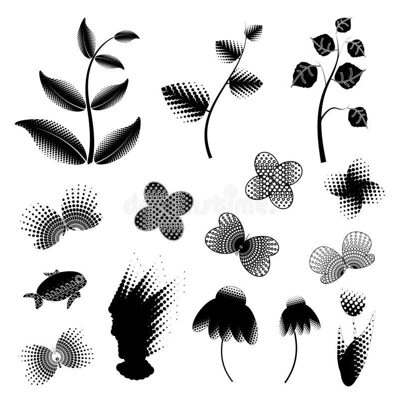 Blanco negro de las plantas fotografía de archivo