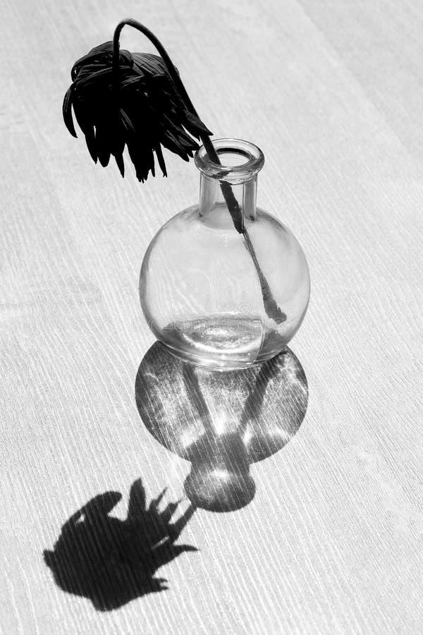Blanco y negro abstracto imagen de archivo
