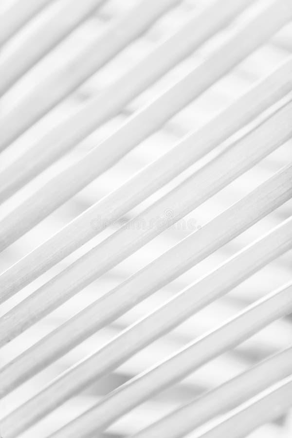 Blanco y negro, el extracto de hojas de palma en hojas de palma empaña fondos Concepto m?nimo imagen de archivo