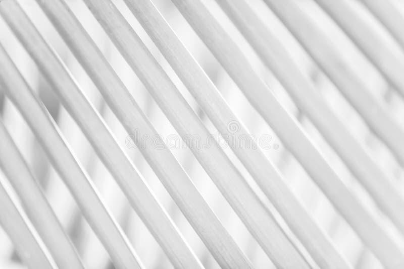 Blanco y negro, el extracto de hojas de palma en hojas de palma empaña fondos Concepto m?nimo imagen de archivo libre de regalías