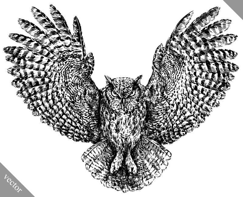 Blanco y negro grabe el ejemplo aislado del vector del búho libre illustration