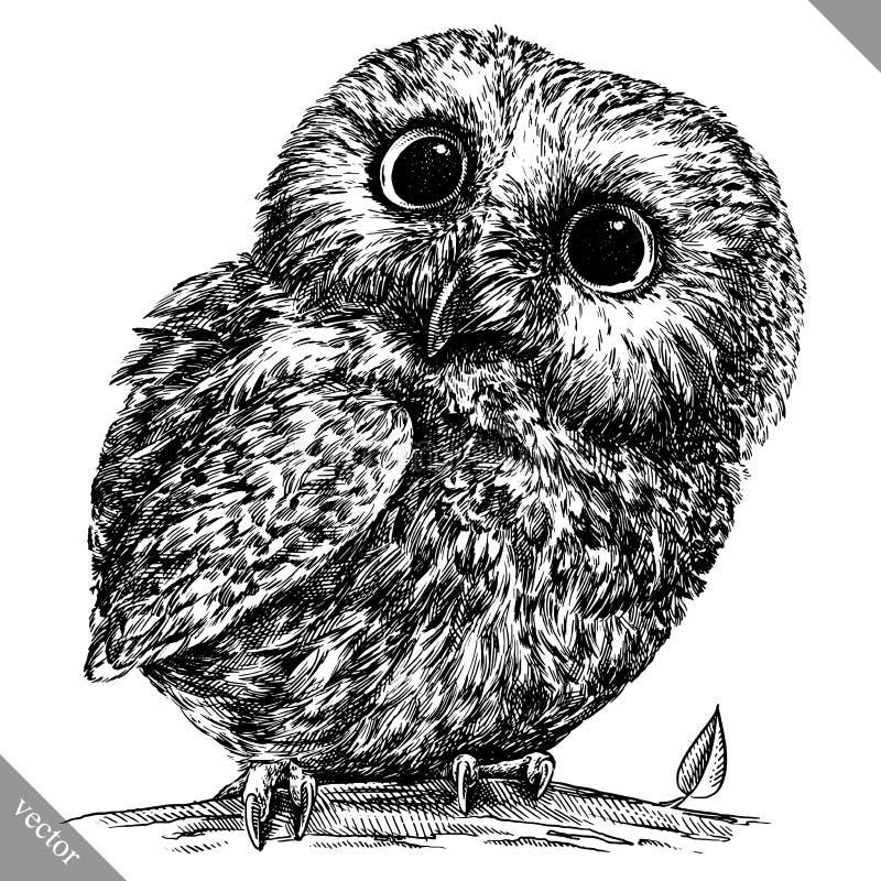 Blanco y negro grabe el ejemplo aislado del vector del búho stock de ilustración