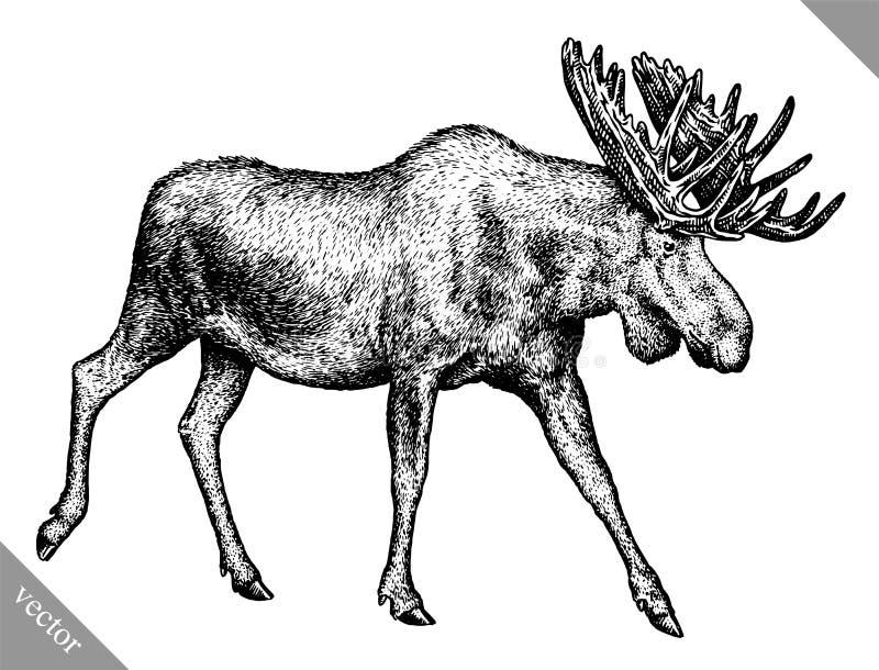 Blanco y negro grabe el ejemplo aislado del vector del drenaje de la mano de los alces libre illustration