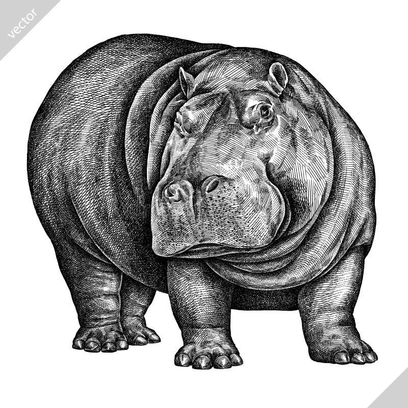 Blanco y negro grabe el ejemplo aislado del vector del hipopótamo stock de ilustración