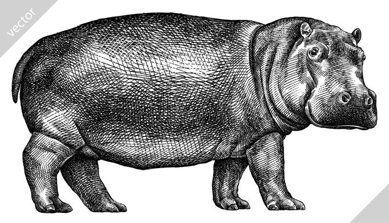 Blanco y negro grabe el ejemplo aislado del vector del hipopótamo libre illustration