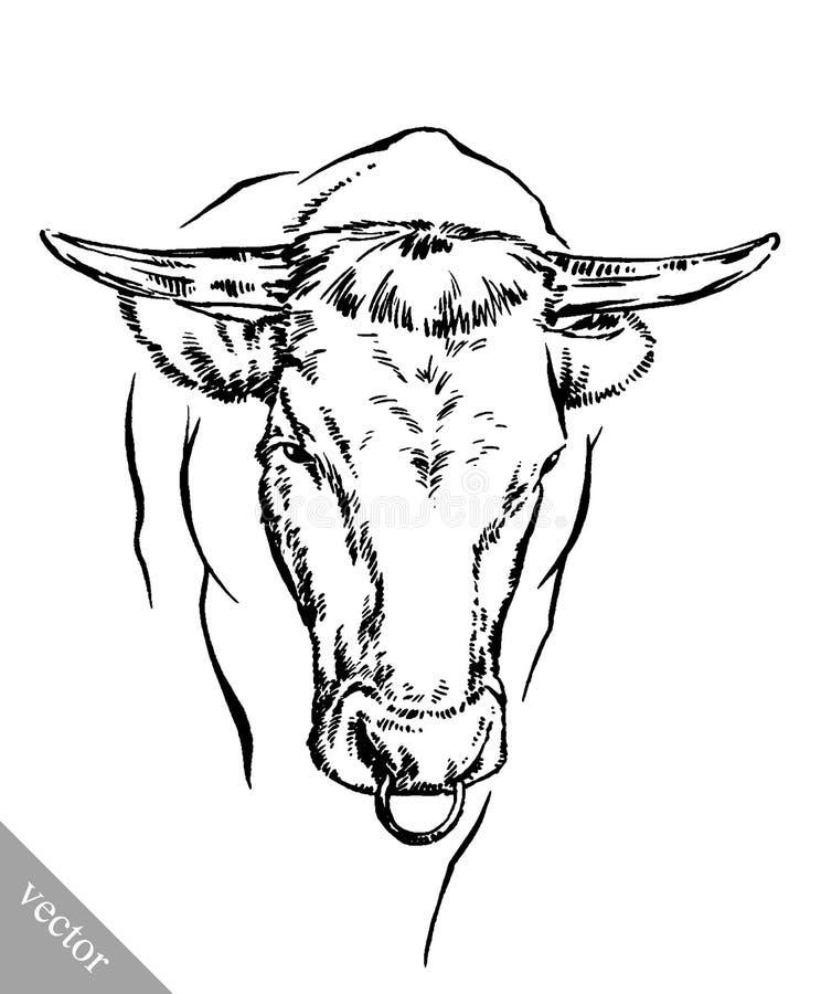 Blanco y negro grabe la vaca aislada stock de ilustración