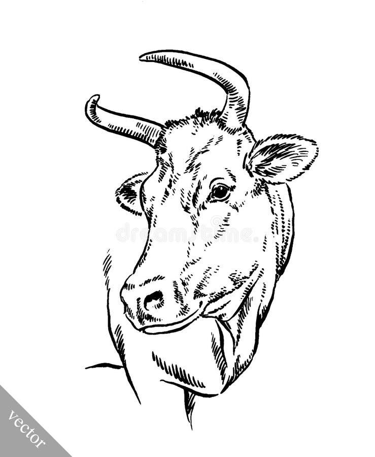 Blanco y negro grabe la vaca aislada libre illustration