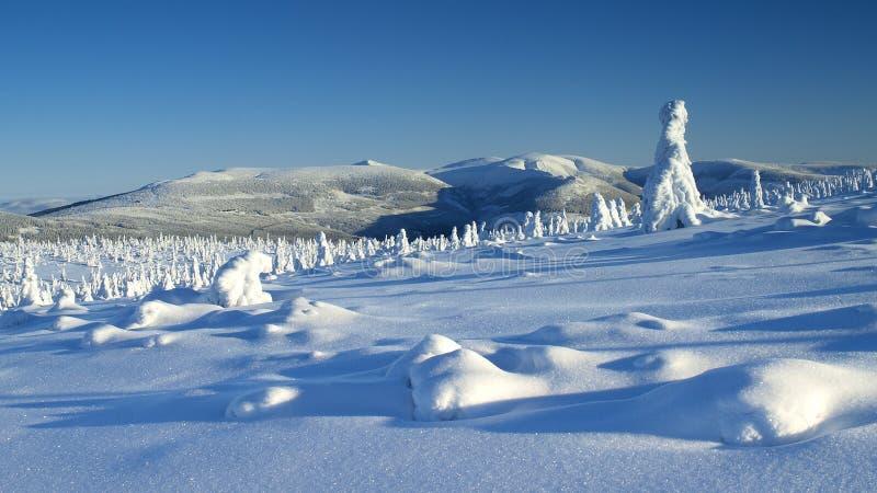 Blancura en las montañas gigantes/Karkonosze foto de archivo libre de regalías