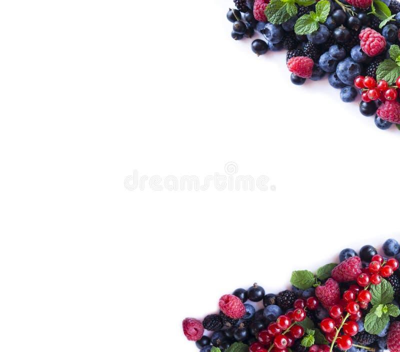 Blanda bär och frukter på gränsen av bilden med kopieringsutrymme för text Mogna blåbär, björnbär, hallon, vinbär på w arkivfoton