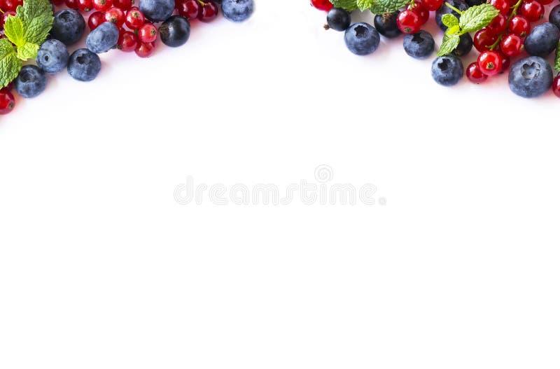 Blanda bär och frukter på gränsen av bilden med kopieringsutrymme för text Mogna röda och svarta vinbär för blåbär, på vit arkivbild