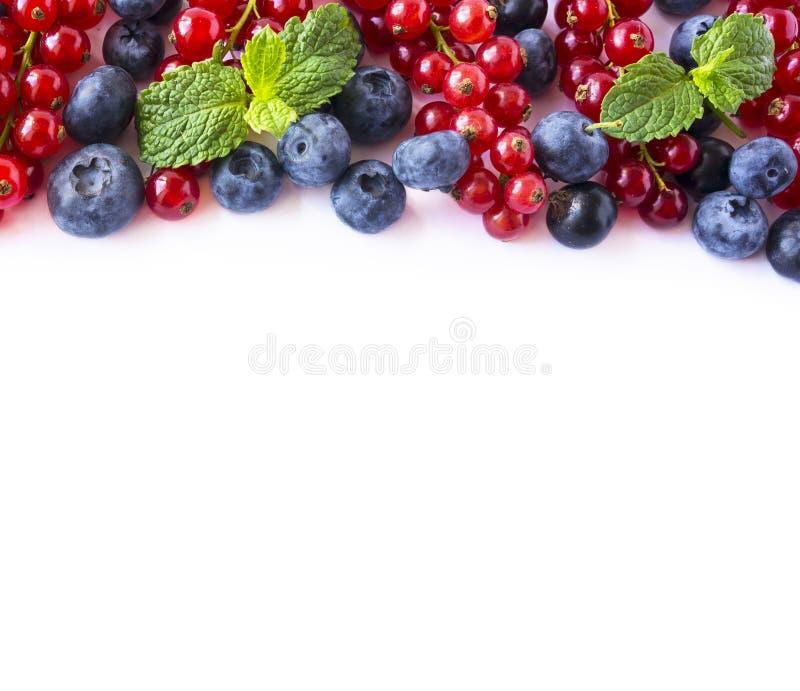 Blanda bär och frukter på gränsen av bilden med kopieringsutrymme för text Mogna röda och svarta vinbär för blåbär, på vit bakgru royaltyfri foto
