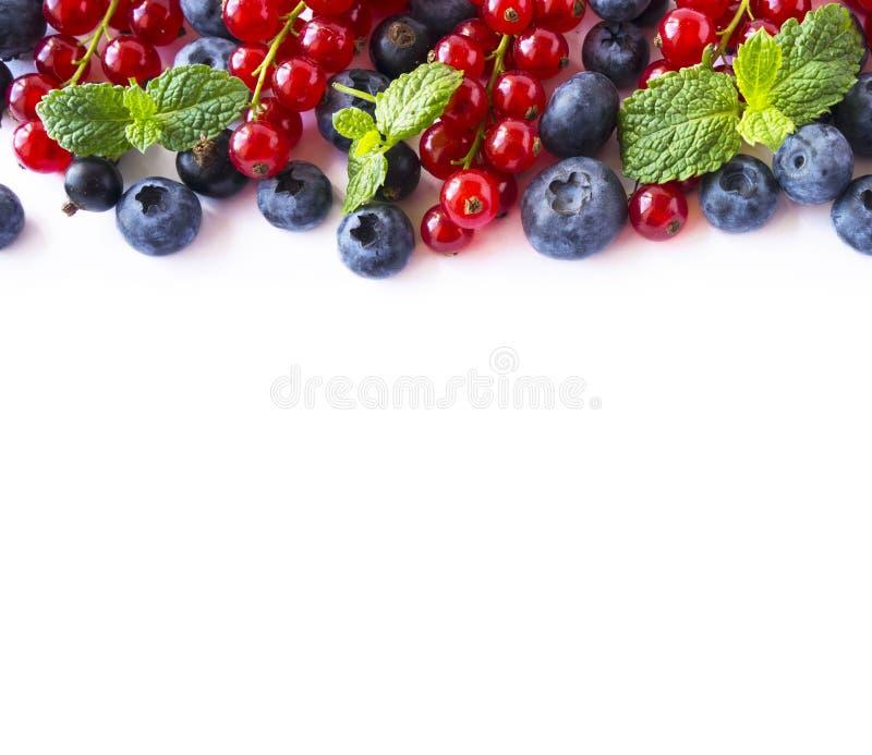 Blanda bär och frukter på gränsen av bilden med kopieringsutrymme för text Mogna röda och svarta vinbär för blåbär, på vit bakgru fotografering för bildbyråer
