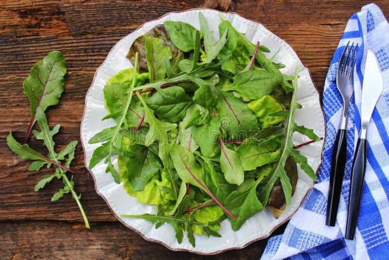 Blanda nya sidor av nyazeeländska spenat, arugula, grönsallat, beta för sallad på en mörk träbakgrund Top besk?dar arkivfoton