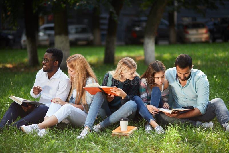 Blandad-lopp grupp av studenter som tillsammans sitter på grön gräsmatta av universitetsområdet royaltyfri bild