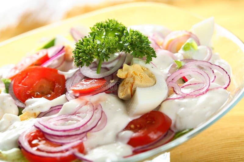blandad sallad för mayonnaise fotografering för bildbyråer