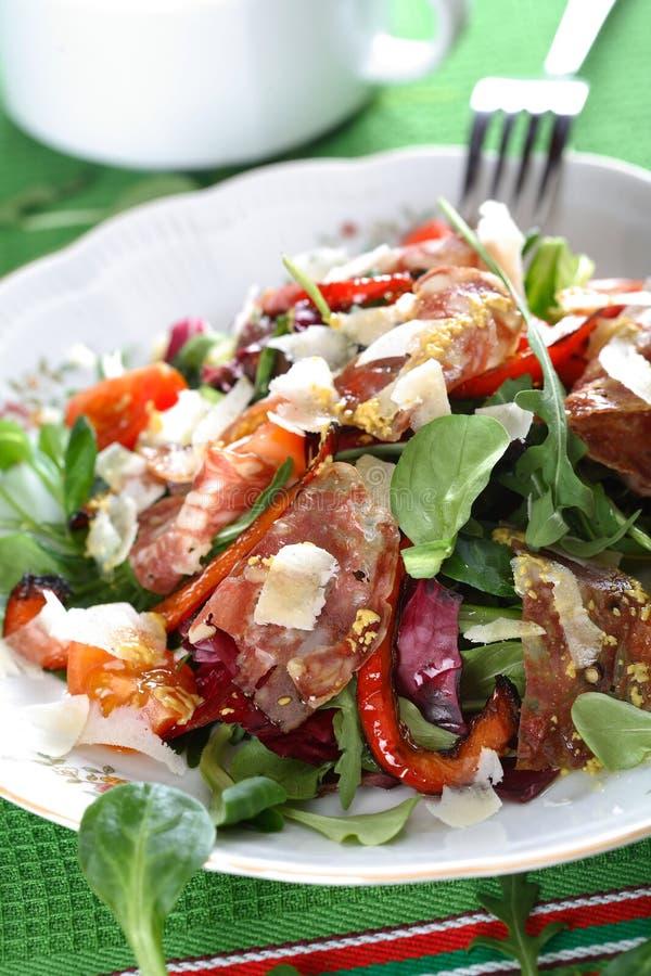 Blandad sallad med salami royaltyfri fotografi