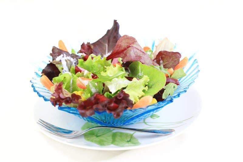 blandad salladgrönsak arkivfoto