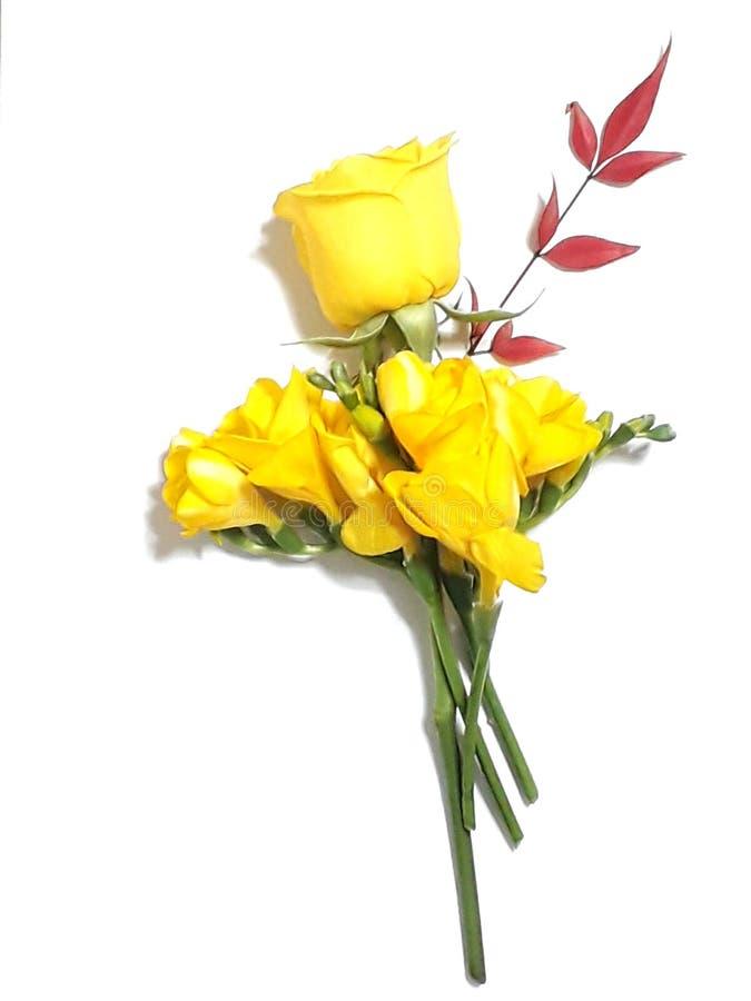 Blandade blommor royaltyfria foton