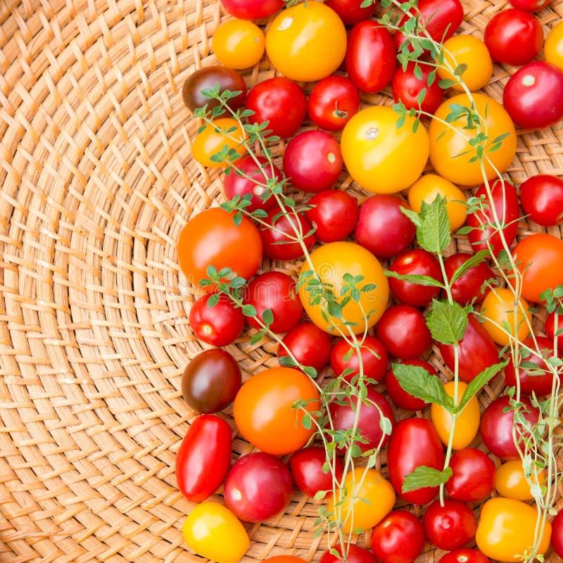 Blandade färgrika tomater arkivfoton