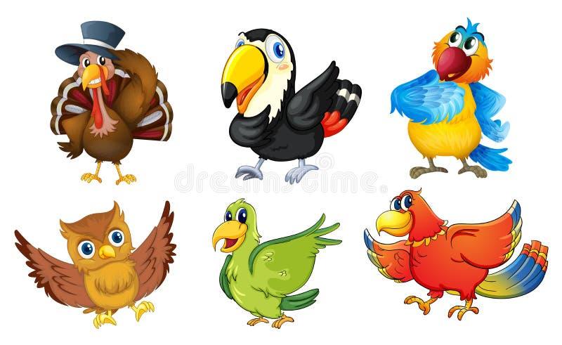 Blandade fåglar på en vit bakgrund stock illustrationer