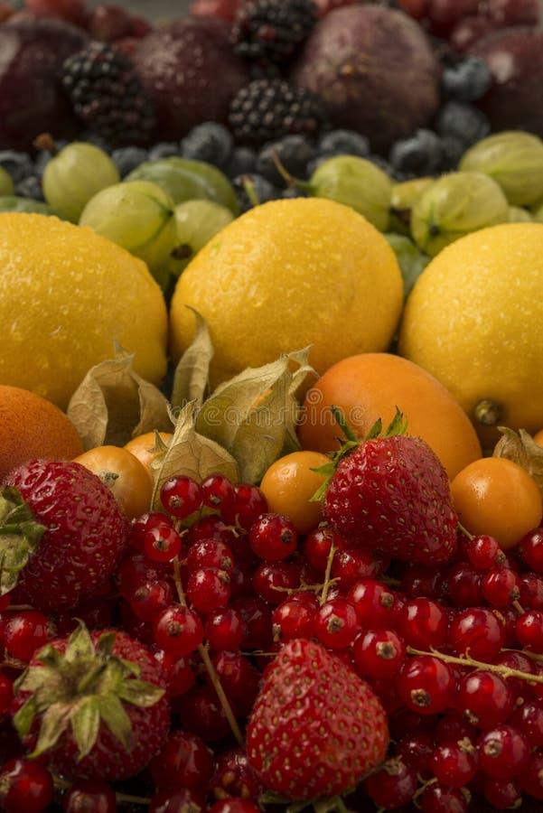 Blandade frukter som är ordnade i regnbågefärger royaltyfria bilder