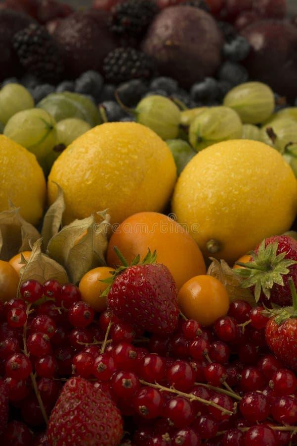 Blandade frukter som är ordnade i regnbågefärger fotografering för bildbyråer