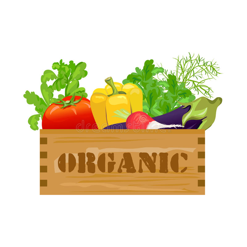 Blandade grönsaker i en trätappningask Organiska produkter royaltyfri foto