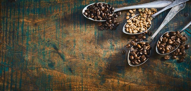 Blandade grillade och rå kaffebönor i skedar arkivbild