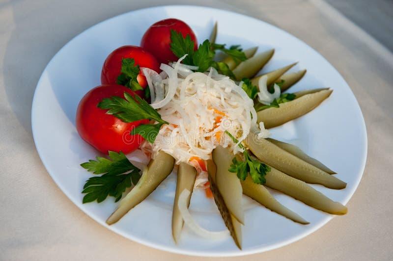Blandade knipor med inlagda tomater, surkålen och inlagda gurkor - det bästa mellanmålet för rysk vodka! arkivbild