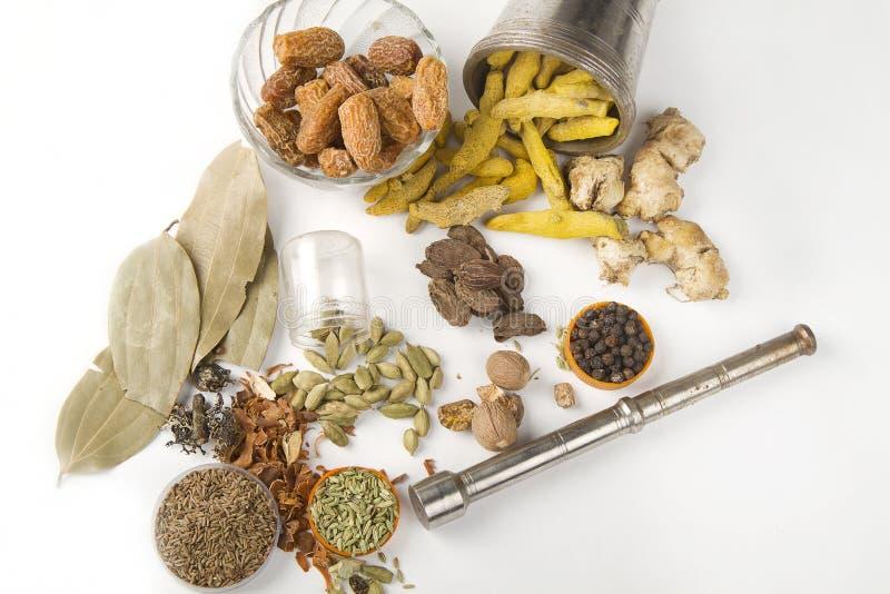 blandade kryddor för garamörtmasala arkivbild