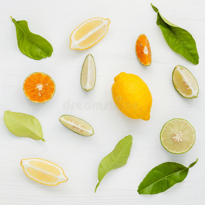 Blandade nya citrusfrukter och sidabakgrund Nya citroner, l royaltyfri bild
