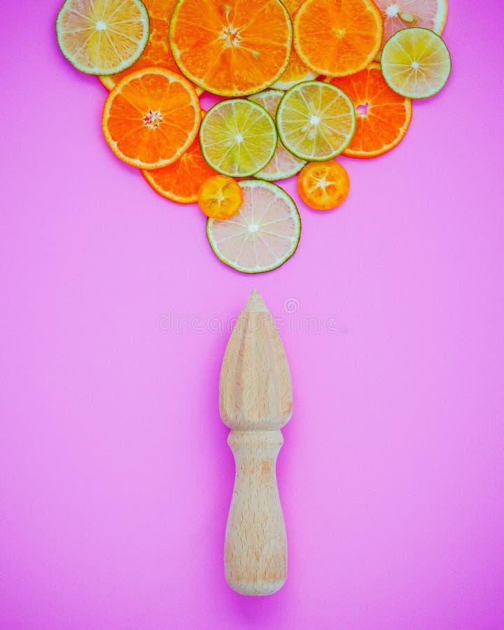 Blandade nya citrusfrukter och träjuicer för sommarcitrusju royaltyfri fotografi
