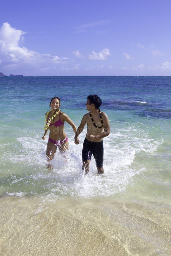 Blandade par i hawaii arkivbild