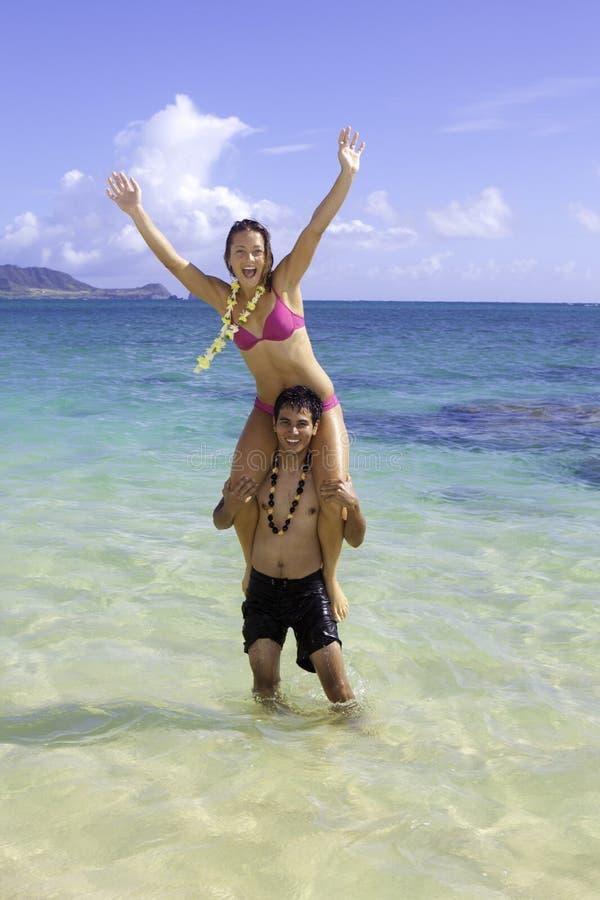 Blandade par i hawaii royaltyfri fotografi