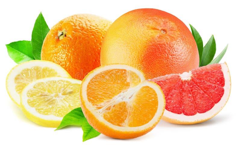 Blandning av citrusfrukter som isoleras på den vita bakgrunden royaltyfri bild