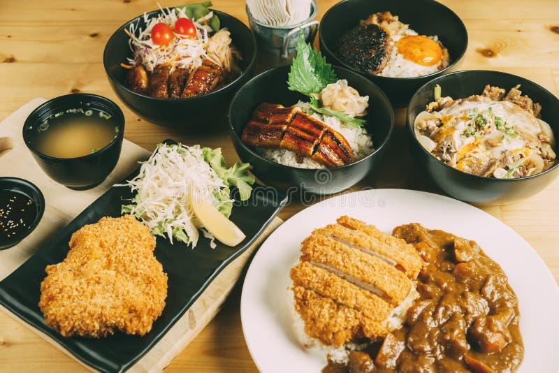 Blandning av Donburi, japansk matstil royaltyfria foton