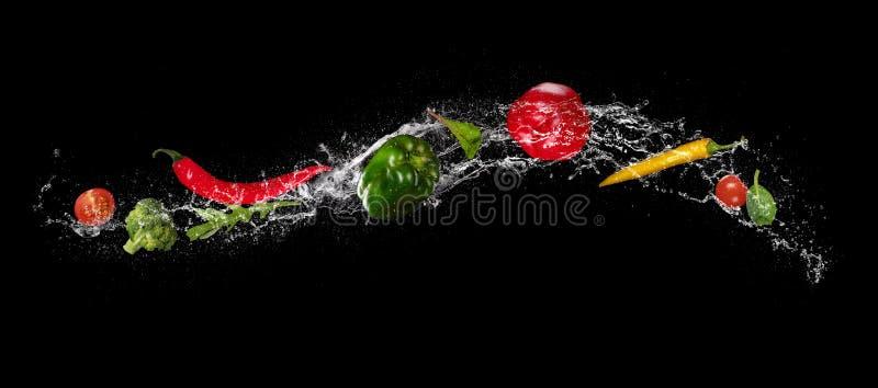 Blandning av grönsaken i vattenfärgstänk på svart bakgrund royaltyfri bild