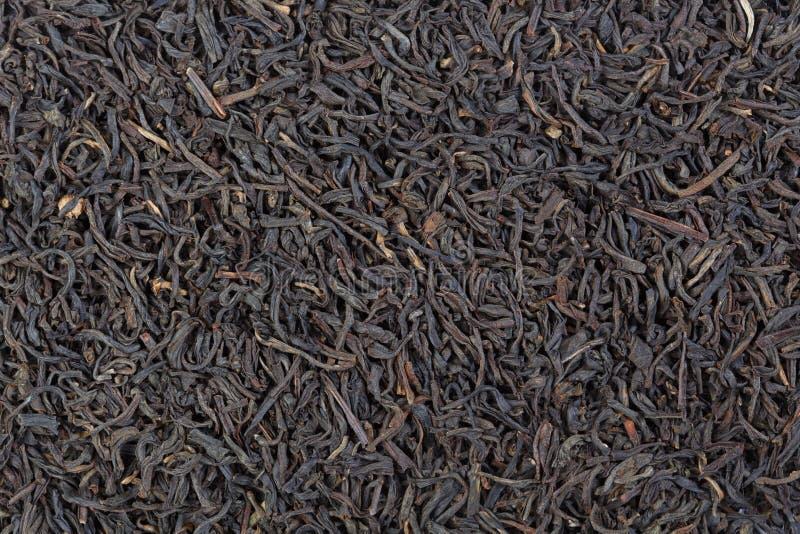 Blandning av kinesiskt svart te Keemun och svart alpint Ceylon te royaltyfria bilder
