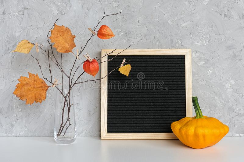Blank black letter board frame and Autumn bouquet of branches with yellow leaves on clothespins in vase, patisson on table Mockup. Blank black letter board frame royalty free stock photo