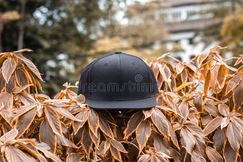 Blank black snapback hat cap flat visor for mockup. Blank snapback hat cap flat visor with black color in outdoor, ready for your mock up design or presentation royalty free stock images