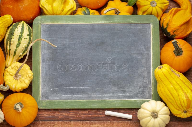 Blank blackboard with squash and gourd stock images