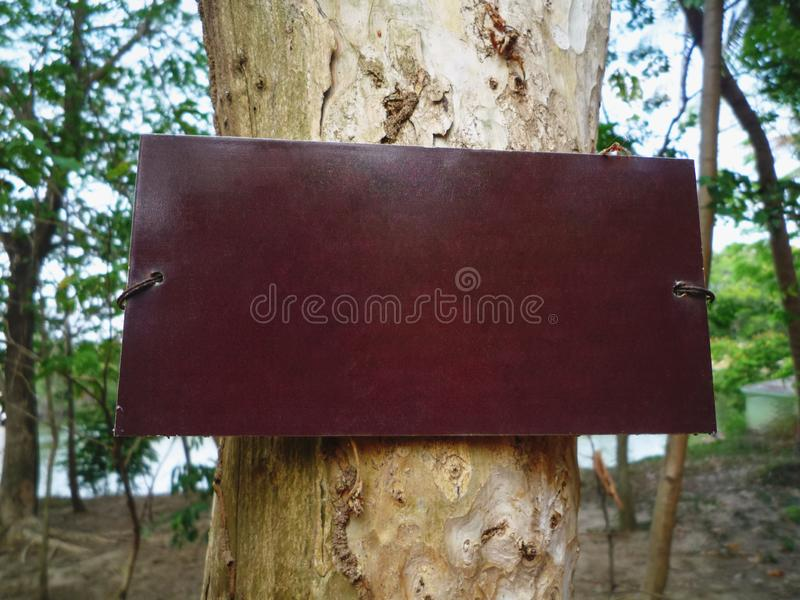 Blank Brown Wood Plate for Showing Information on Tree Trunk. Close-up Blank Brown Wood Plate for Showing Information on Tree Trunk royalty free stock photos
