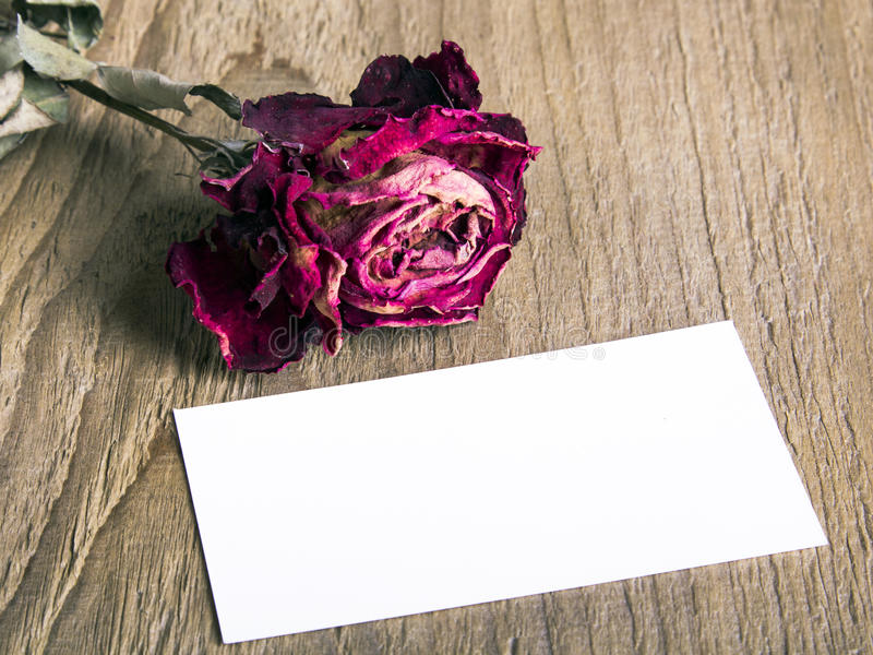 Blank business card and the dried rose. On wooden background royalty free stock images