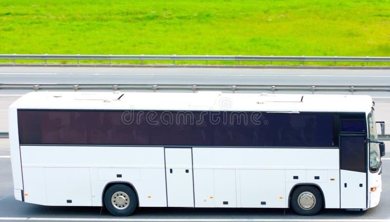 blank buss arkivbilder