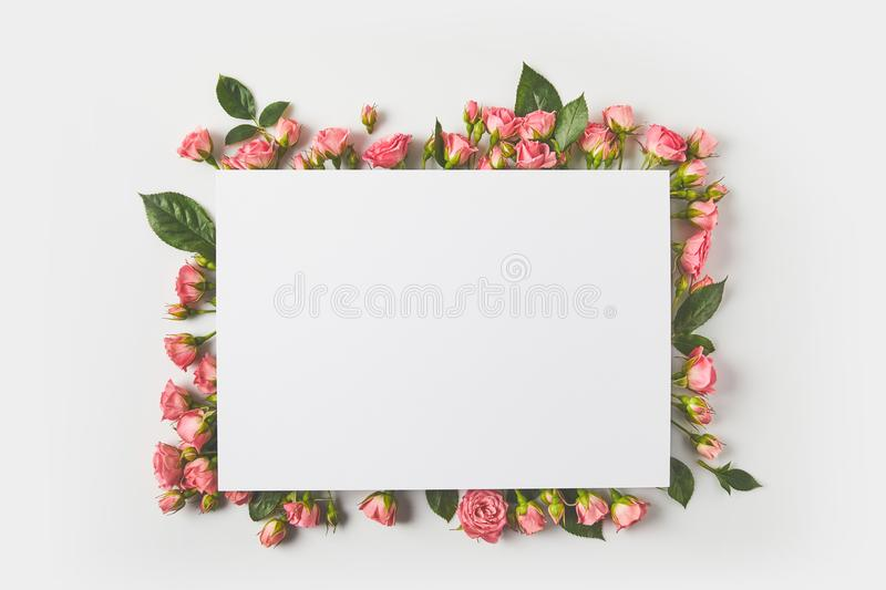 blank card and beautiful pink roses with green leaves on grey stock photo