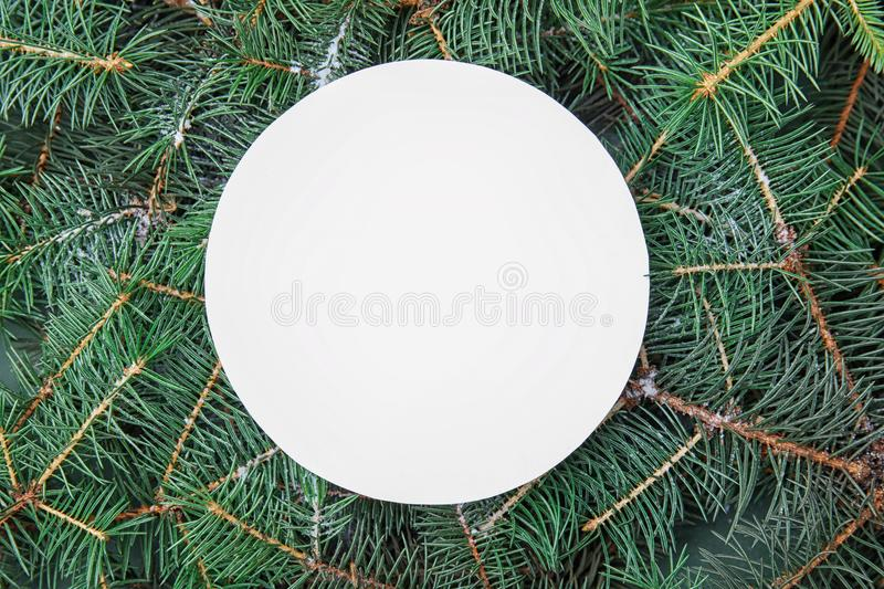 Blank card on branches of Christmas tree. Top view royalty free stock images