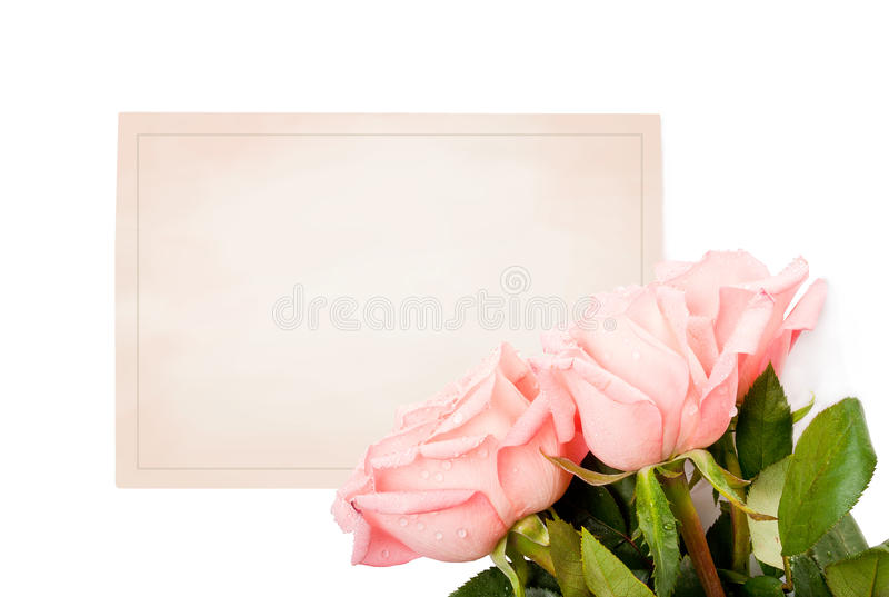 Blank Card For Congratulations Royalty Free Stock Photography