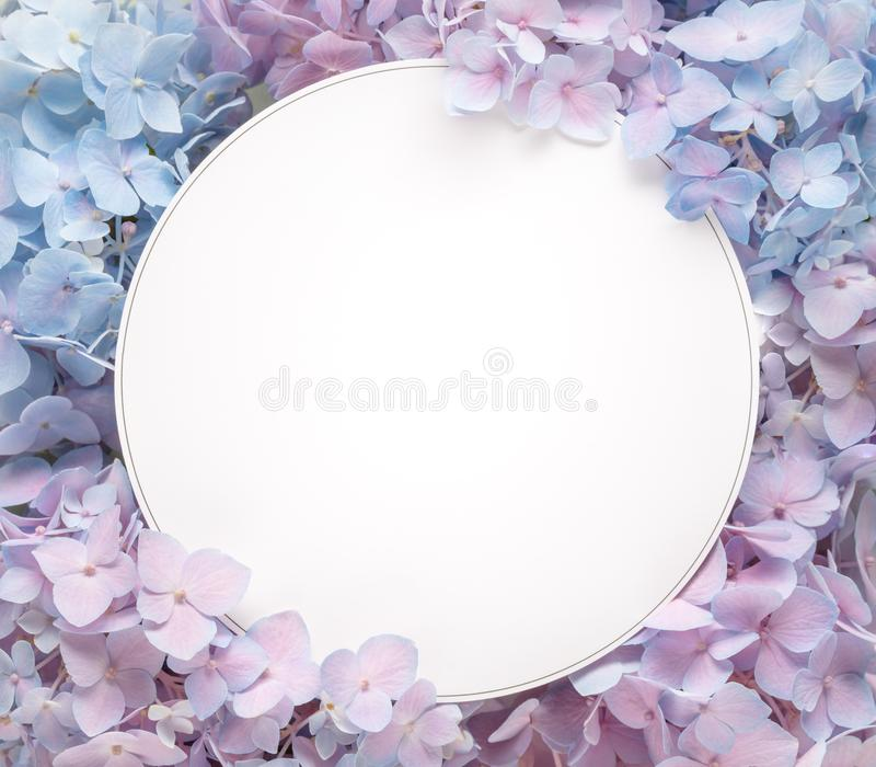 Blank card with flower petals. Closeup stock photo